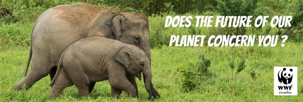 World Wide Fund for Nature International: WWF's banner