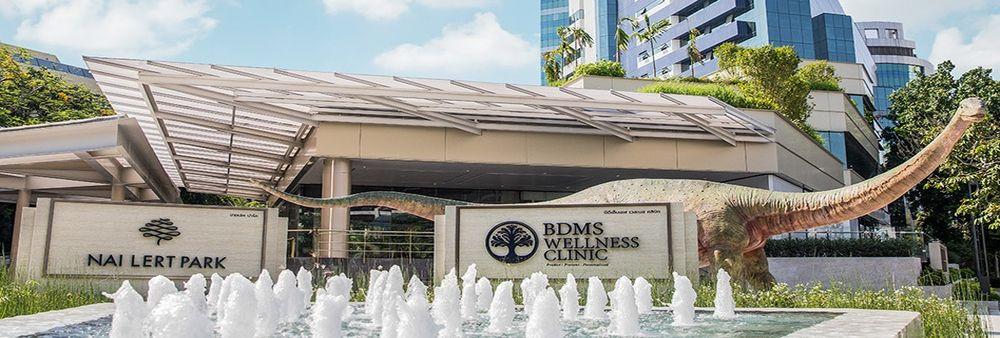 BDMS Wellness Clinic Co., Ltd.'s banner