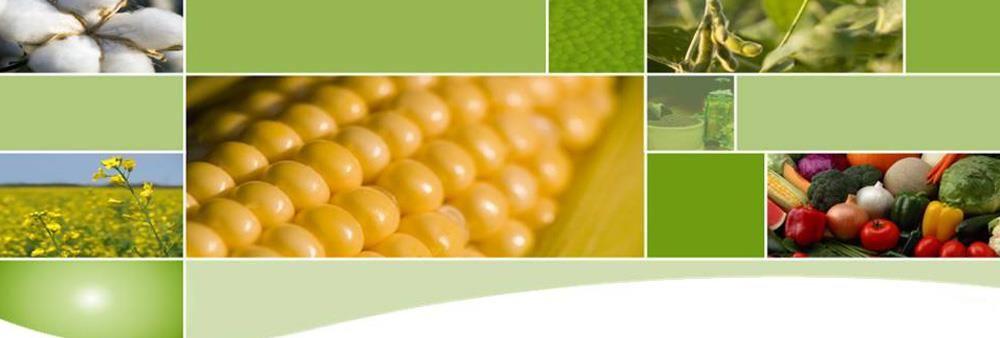 Bayer Thai Co., Ltd.'s banner