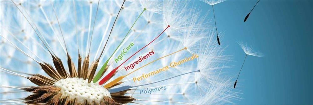 Behn Meyer Chemicals (T) Co., Ltd.'s banner