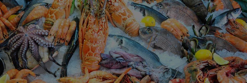 文樂園食品貿易有限公司's banner