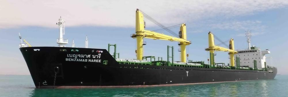 Precious Shipping Public Company Limited's banner