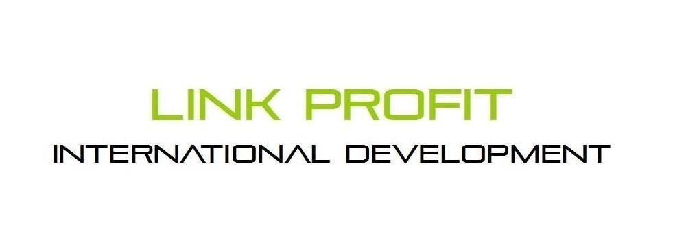 Link Profit International Development Limited's banner
