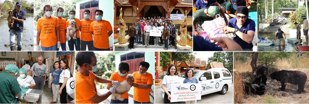World Animal Protection's banner