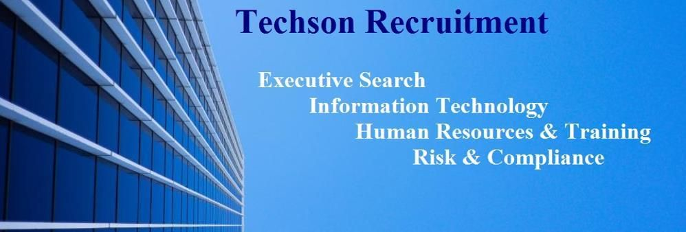 Techson Consulting Limited's banner