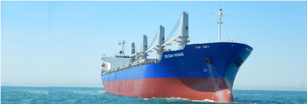 Taylor Maritime (HK) Limited's banner