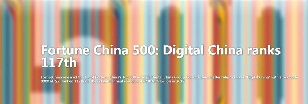 Digital China (HK) Limited's banner