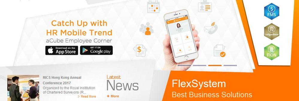 Flexsystem Ltd's banner