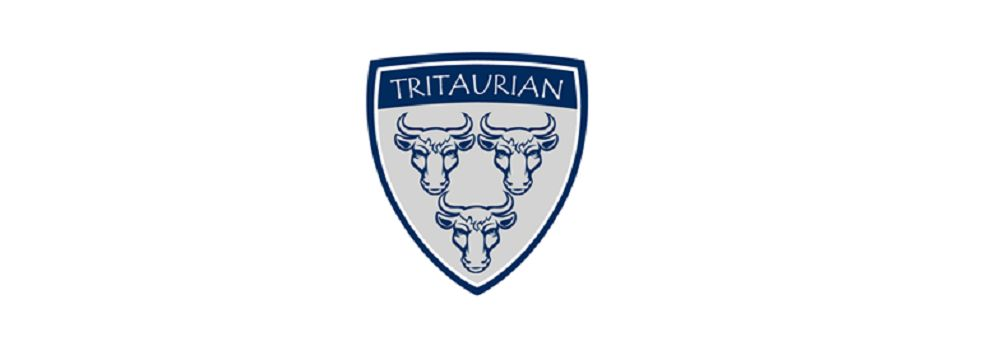 Tritaurian Consulting Limited's banner