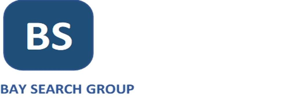 Bay Search Group Limited's banner