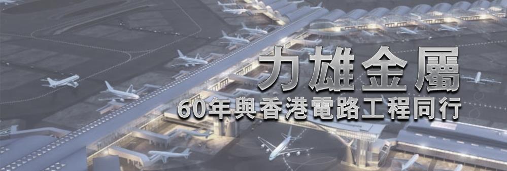 Lik Hung Metal Manufacturing Limited's banner