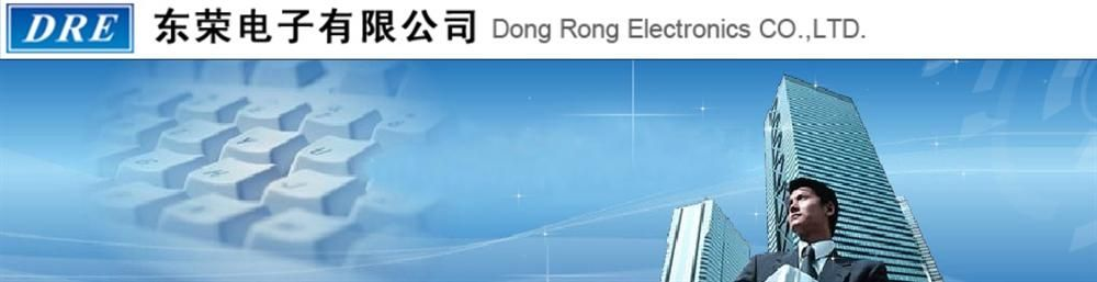 Dong Rong Electronics Co Ltd's banner