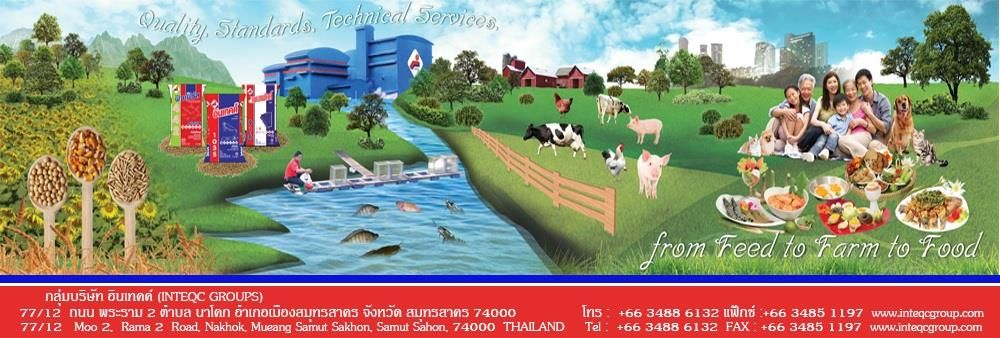 INTEQC GROUP (INTEQC Flour Mill Co.,Ltd.)'s banner