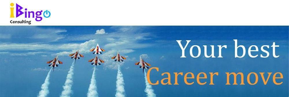 iBingo Consulting Co., Ltd.'s banner