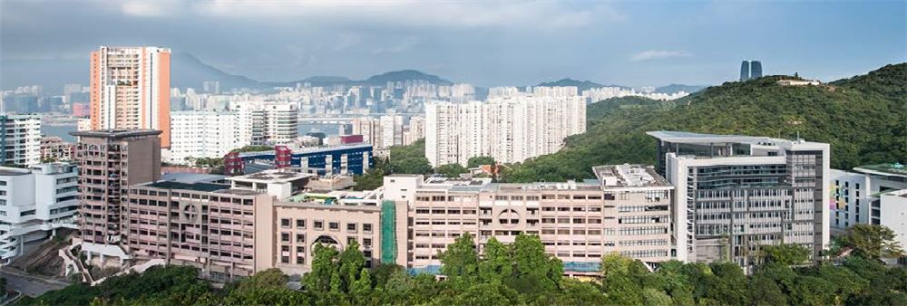 Chinese International School's banner